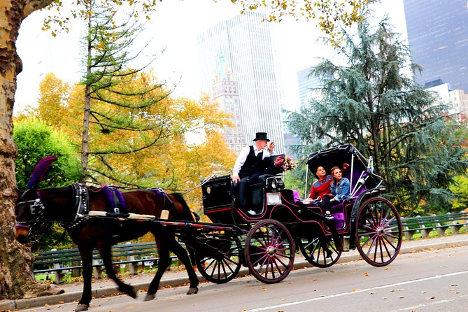 Central Park Horse Carriage Ride (Short Loop)