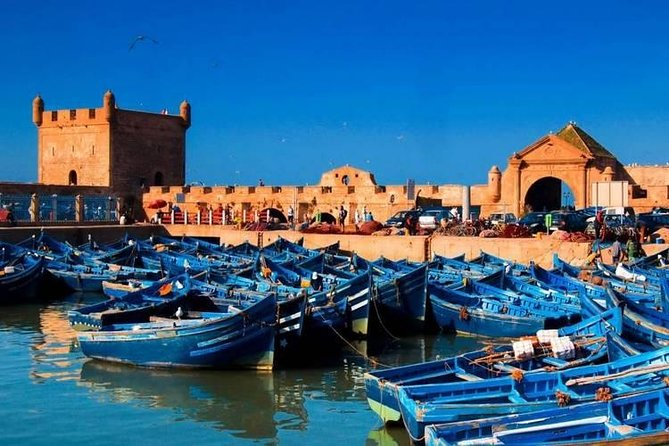 Full Day Private Day Tour To Mogador And Argan Forest In Essaouira