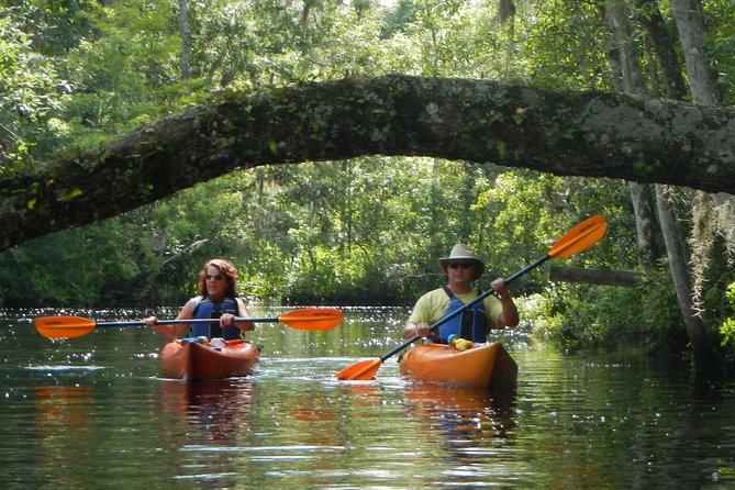 Lofton Creek Kayaking Trip with Professional Guide
