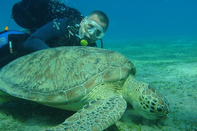 Adventure Diving In Hurghada