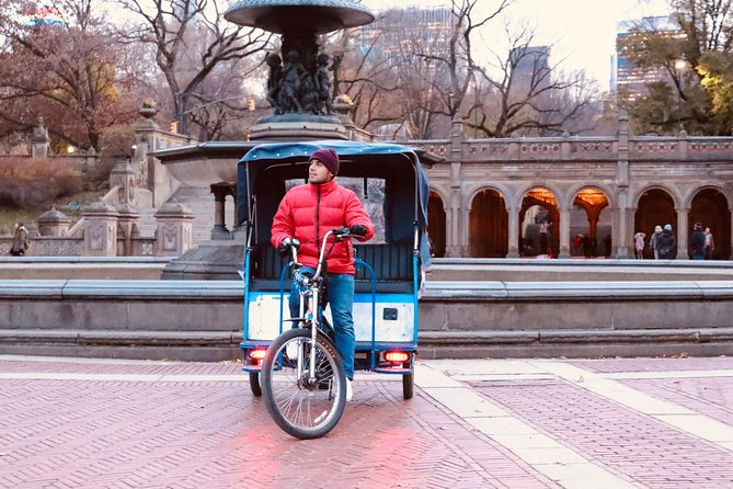 Central Park VIP Tour (All park tour up to 2 hour with unlimited stops) pedicab