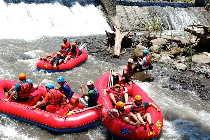 Telaga Waja Rafting and Holy Water Temple, Rice Terrace, Waterfall Tour