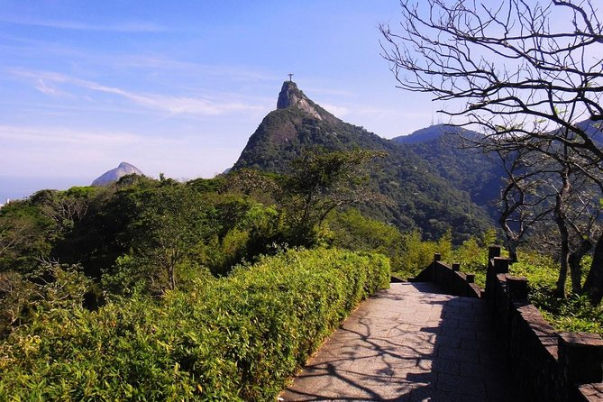 Tijuca Forest - Private Tour