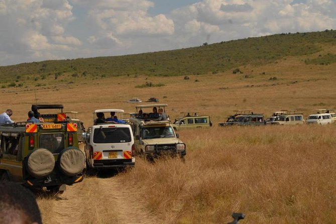3 Days Masai mara Safari Adventure