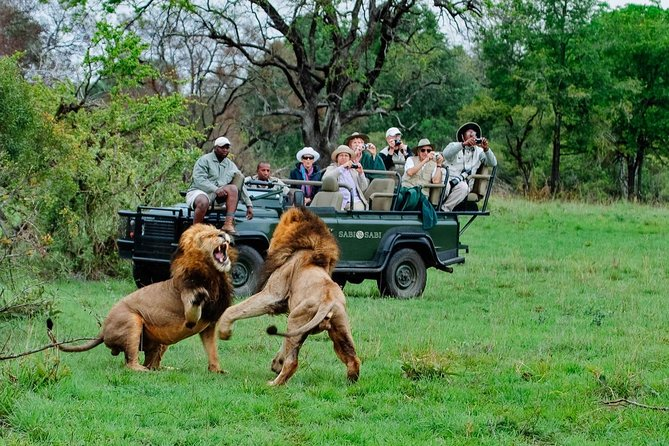 Private Shuttle Service from Johannesburg to Kruger National Park photo 1