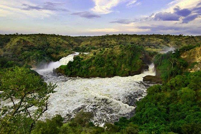 14 days Western Uganda Safari