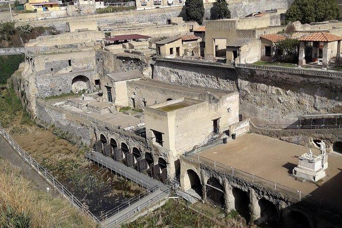 Amazing Herculaneum Skip the line