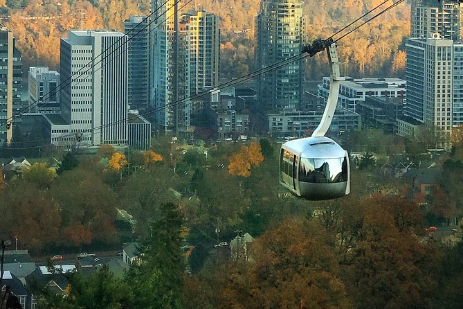 The Aerial Tram hovers above the South Waterfront