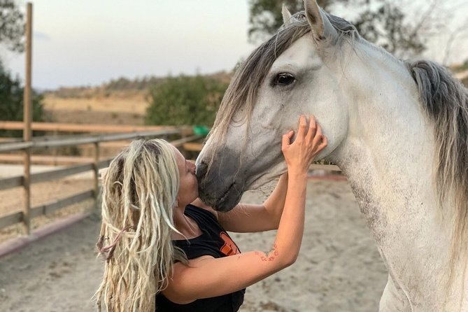Connect with horses