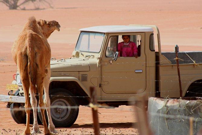 Desert Safari and Wadi Bani Khalid
