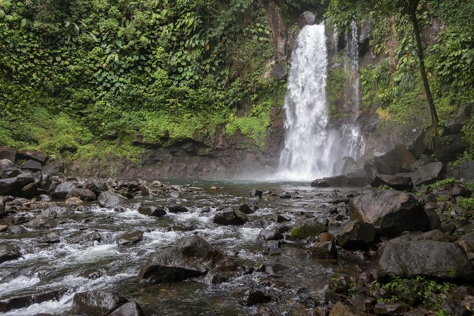 Waterfall walk and forest hike with lunch and rum distillery visit