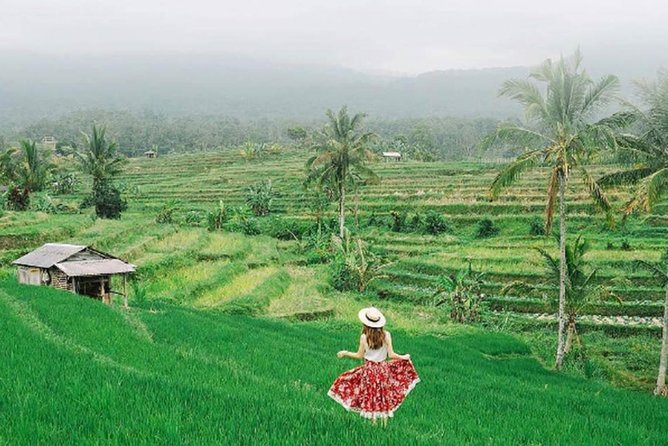 Bali Tour Package 10 Days 9 Nights photo 7