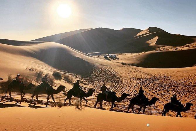 Marrakech to Merzouga desert tour - Shared 3 days 2 nights Camel Ride Tours
