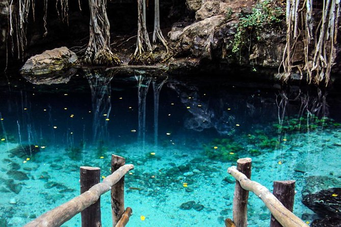Cenote Personalise Adventure Tours