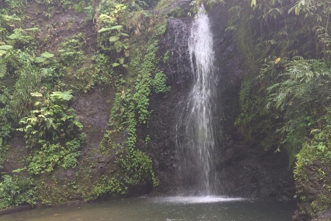 Inside a Enjoy Martinique In All Terrain Vehicule
