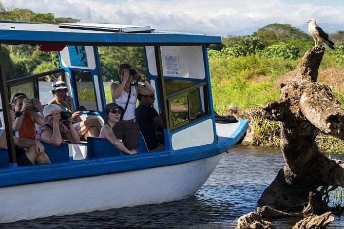 Crocodile Tour on the Tarcoles River from Monteverde photo 7
