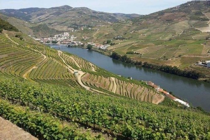 Best places to visit in Pinhão and Foz Côa - Private Tour
