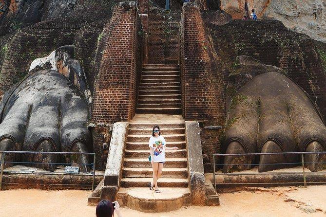 Tour to Sigiriya Rock, Dambulla Cave Temple & Minneriya National Park