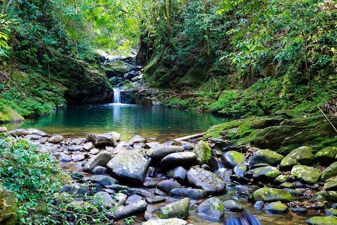 Bach Ma National Park Day Trip From Hoi An & Da Nang
