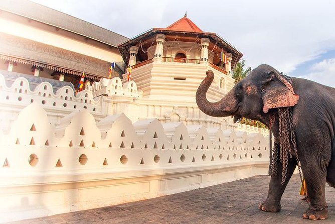 Tour to the Last Kingdom of Sri Lanka - Kandy