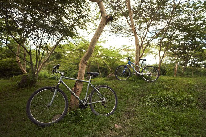 Rent a bike on the border of Arusha National Park