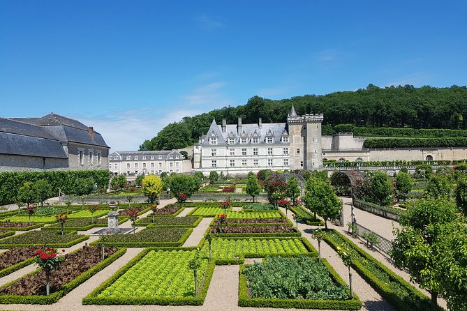 Enjoy a great guided visit of Chateau de Villandry and its unique gardens