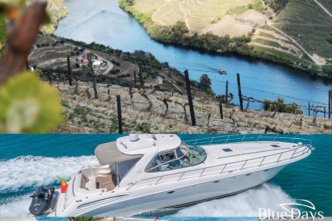 Yacht -porto& Douro Private Tour