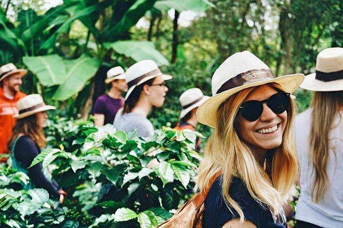 Coffee Farm Hacienda Coloma • Premium Private Tour