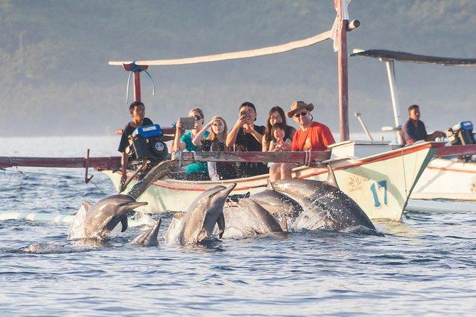 Canggu Lovina Dolphin View
