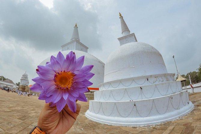 Two Days Tour to Anuradhapura and Sigiriya