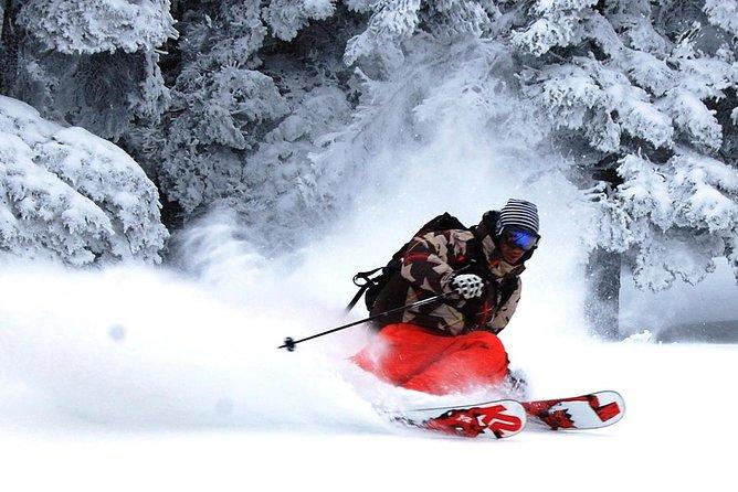 Nagano Ski Buffet