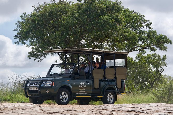 on safari in the Kruger Park
