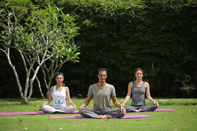 Phuket's Private Detox & Rejuvenation Experience - Yoga, Massage & Mediation