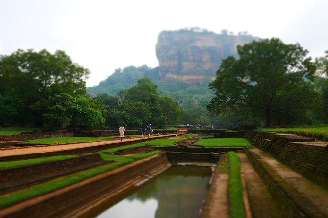 Tour to Sigiriya Rock Fortress and Dambulla Cave Temple