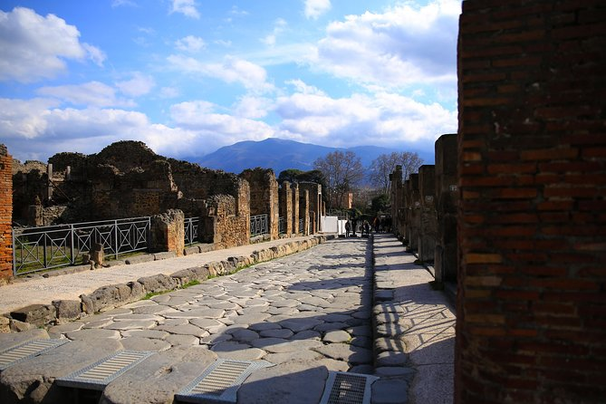 Skip the Line Private Tour of Ancient Pompeii with Lunch&Wine Tasting from Rome