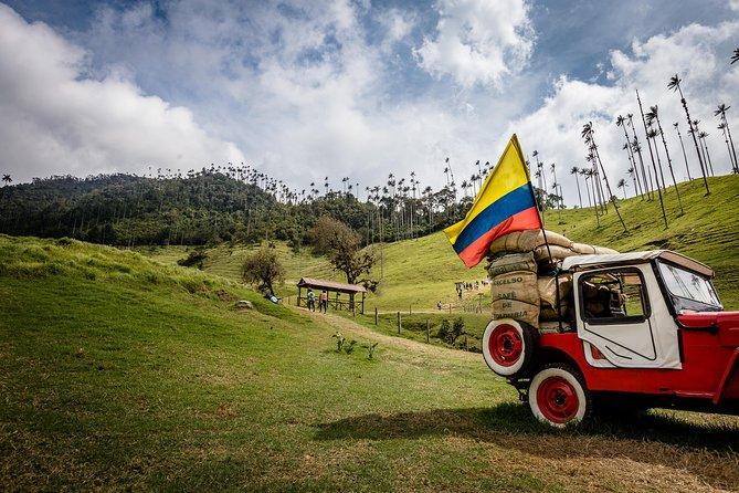 - Cali, COLOMBIA