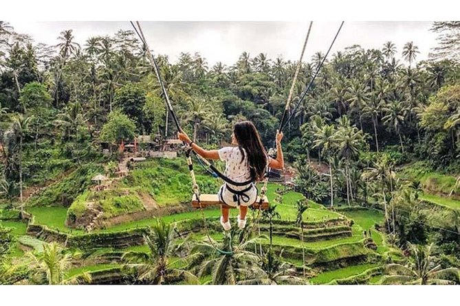 Best of Ubud Private Tour: Swing, Rice Terrace, Temple and Coffee Plantation