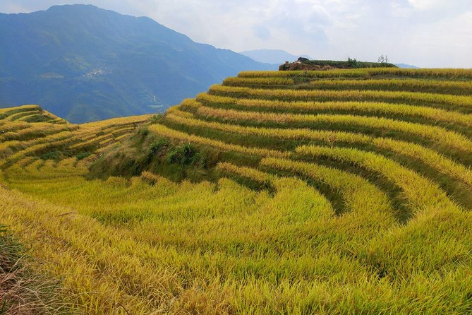 Longji Rice Terraces Day Tour from Guilin hotel photo 7