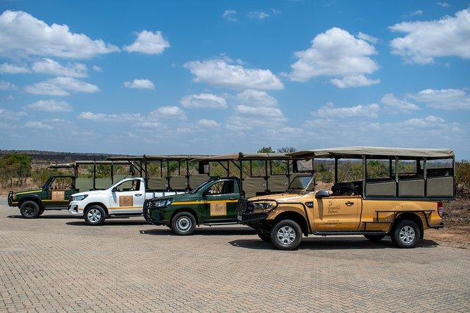 Ganztägige Safari im Kruger Park