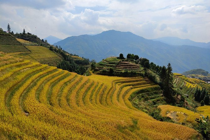 Longji Rice Terraces Day Tour from Xingping hotel photo 10