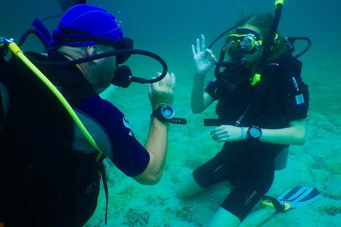 Red River Divers - Diving Trip for PADI Licensed and Non-Licensed Divers photo 1