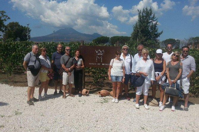Half-Day Trip to Mt. Vesuvius from Pompeii