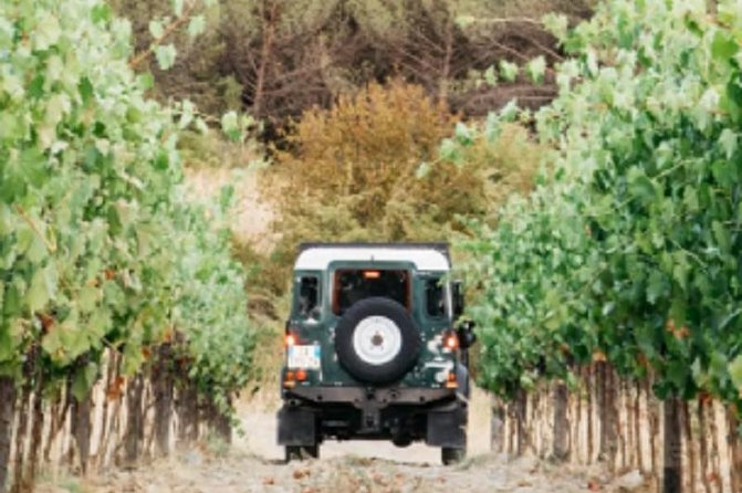 Jeep Safari among the Chianti vineyards with wine tasting