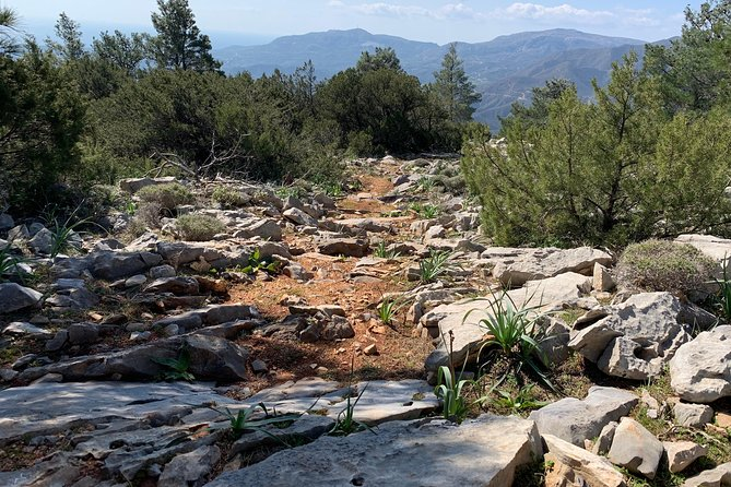 The Profitis Ilias Hike by Art and Walk photo 4