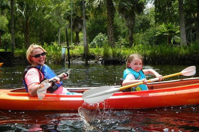 Amelia Island Kayak Rental on Lofton Creek