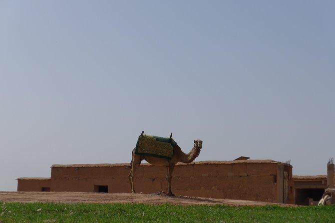 Atlas Mountains Imlil day trip & desert Agafay