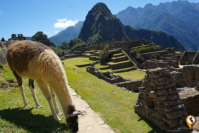 3-Day tour Cusco Machu Picchu