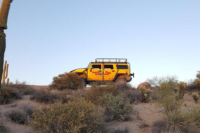 Sonoran Desert Hummer Night Tour and Critter Hunt
