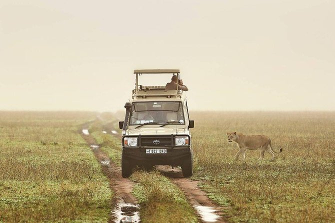 10 Day Tanzania Tented Camps Safari