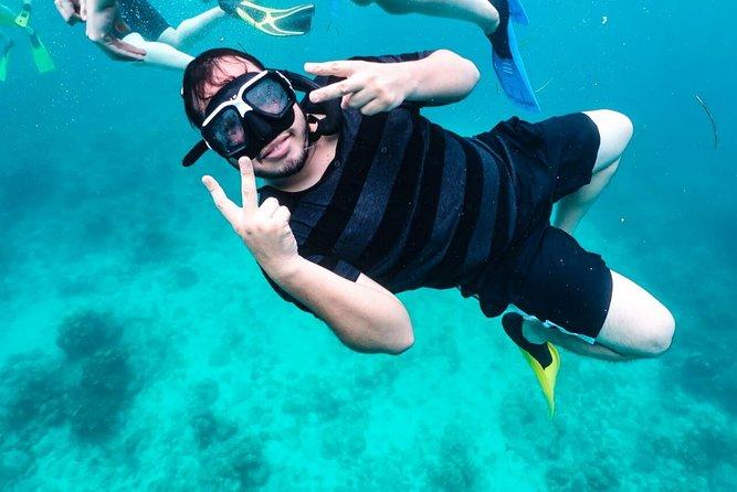 PRIVATE: Roatan Island Sightseeing and Sea Adventure